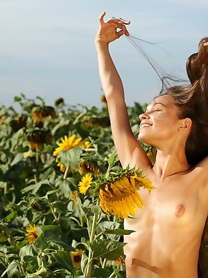 Funky photo-session in sunflowers