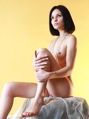 avErotica - Anton Volkov Bumptious Like Nudes
