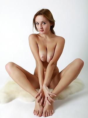 avErotica - Anton Volkov Cavalier Ventilate Nudes
