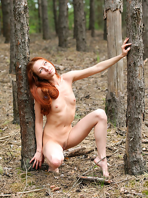 avErotica - Anton Volkov Disdainful Melody Nudes